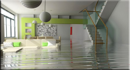 Flood and Water Damage Cleanup in Palm Beach County